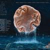 序破急 -Jo Ha Kyu- by Gaspar Claus 公式サイト